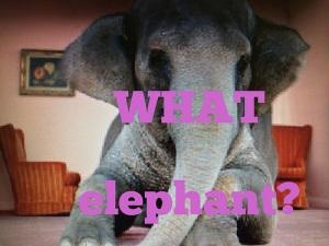 elephant words